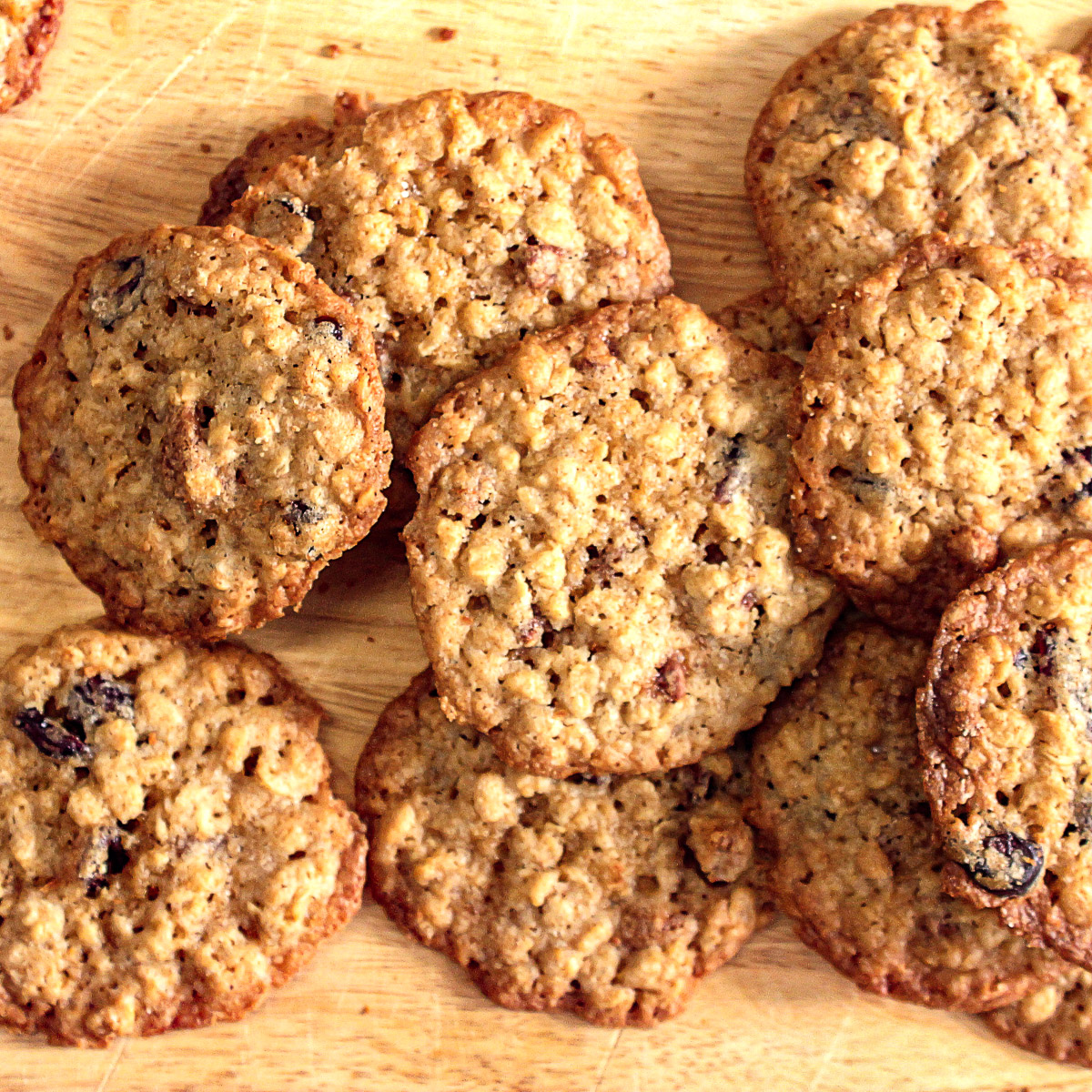 Overhead view of oatmeal cranberry pecan cookies