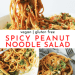 Spicy Peanut Noodle Salad Recipe - Vegan and Gluten Free! | Chenée Today