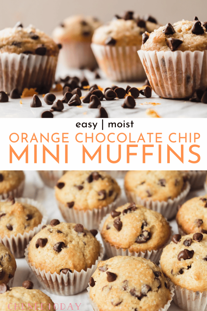 Simple Homemade Orange and Chocolate Chip Mini Muffins Recipe   Chenée Today