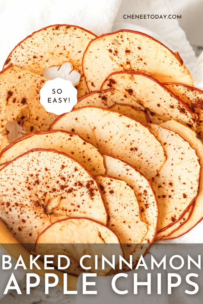 Best Homemade Oven Baked Cinnamon Apple Chips | Chenée Today