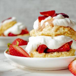 Sweet Summertime Cookbook Launch!